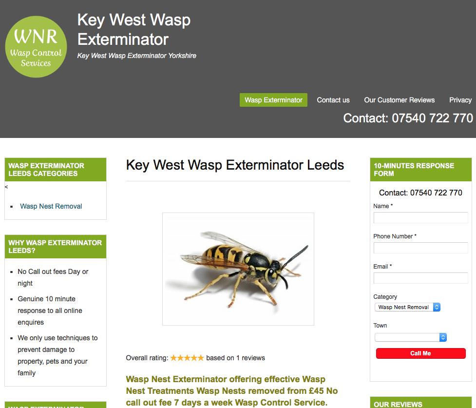 key West wasp Exterminator
