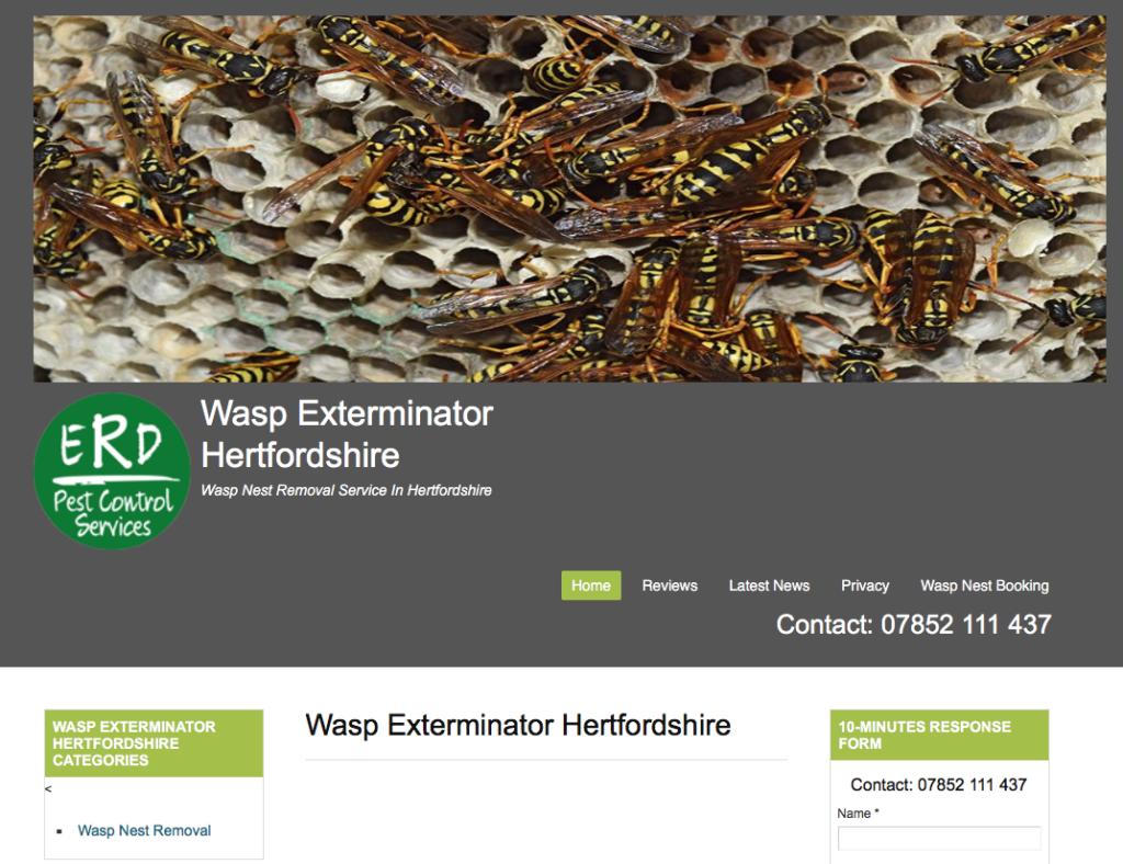 Wasp nest removal hertfordshire